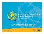 Curăţenie industrială - Descarcă documentul integral (PDF - 3.991 Kb)