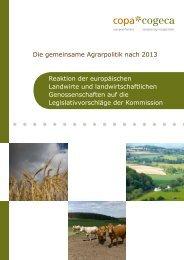 Die gemeinsame Agrarpolitik nach 2013 Reaktion ... - Copa-Cogeca