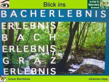 Bachblicke - Wasserland Steiermark