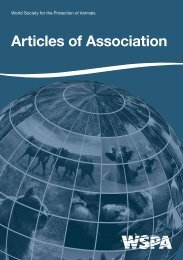 Articles of Association - WSPA