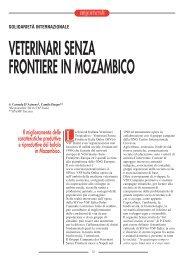 VETERINARI SENZA FRONTIERE IN MOZAMBICO - SIVeMP