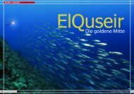 Web-Version (2.8 MB) - DiveInside