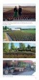 PLANTSKOLA AB - Eriksbo Plantskola - Page 4