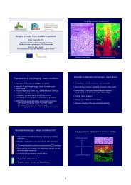 Imaging cancer: from models to patients Fluorescence in ... - Encite