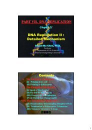 DNA Replication II : Detailed Mechanism PART VII. DNA ...