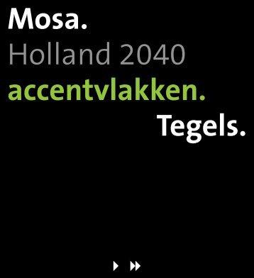 Accentvlakkenfolder Holland 2040 - Mosa