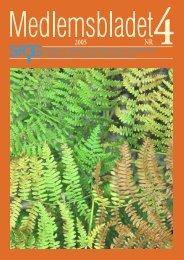Medlemsblad 4 2005 - SFOG