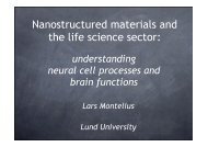 Nanostructured materials and the life science sector - Nano Connect ...
