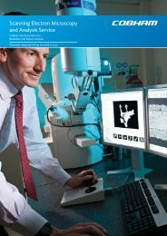 Scanning Electron Microscopy and Analysis Service