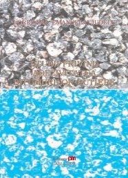 Studii privind adezivitatea bitumurilor rutiere - PIM Copy
