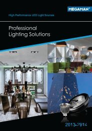 Professional Lighting Solutions - Life in Light