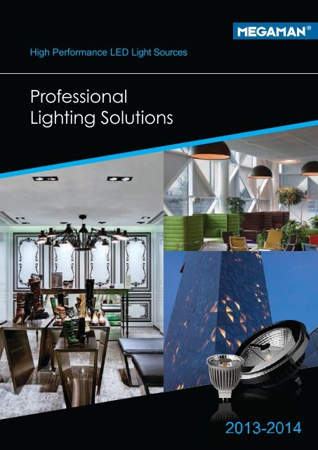 Professional Lighting Solutions Life In Light