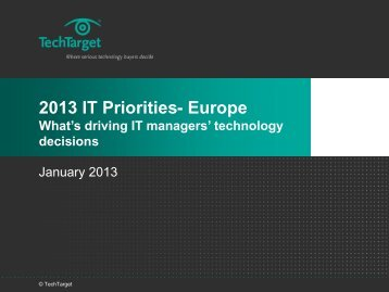 Which of these broad initiatives will your company implement in 2013?