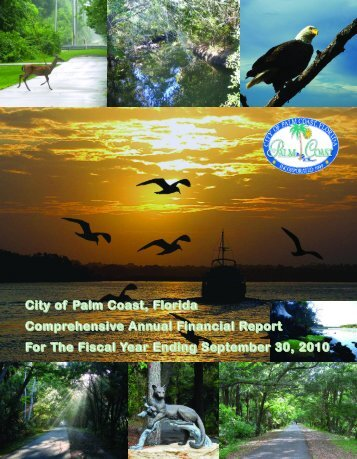 City of Palm Coast, Florida Comprehensive Annual Financial Report ...