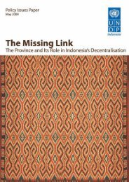 Missing Link: The Province and its Role in Indonesia's ... - UNDP