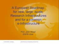 The European Roadmap for Research Infrastructures - e-IRG