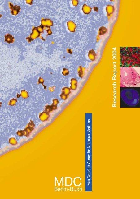 Research Report 2004 Pdf Mdc