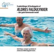 8 anbefalinger til forebyggelse af ældres faldulykker - Sund By ...