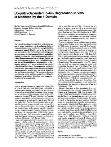 thesis on ubiquitin Fluorescent reporters for the ubiquitin-proteasome system (2005) essays biochem 41(1) possible role of the ubiquitin-proteasome system in neurodegenerative.