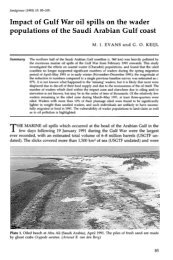 Impact of the Gulf War oil spill on the wader ... - Nwrc.gov.sa