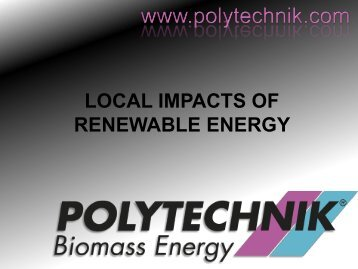 LOCAL IMPACTS OF RENEWABLE ENERGY