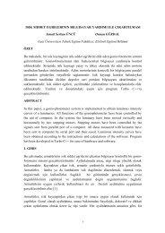 Obtaining the luminous intensity curves by aid of ... - Gazi Üniversitesi