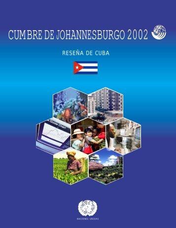 CUMBRE DE JOHANNESBURGO 2002 - ONU