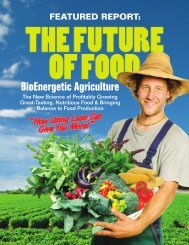 The Future of Food: BioEnergetic Agriculture - Vortex Brewer