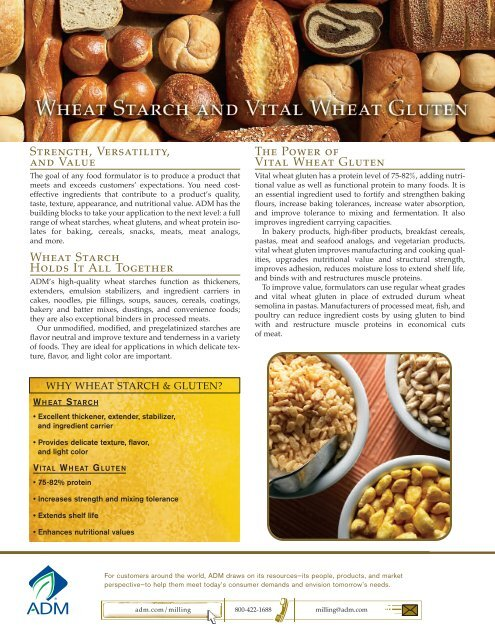 Wheat Gluten and Starch - ADM