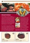 WI LK Wurst & Schinken - Wilk Gourmetgroup - Seite 6