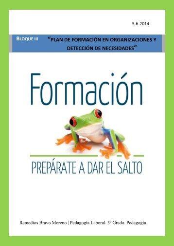 Plan de formación en organizaciones como estrategia de desarrollo empresarial