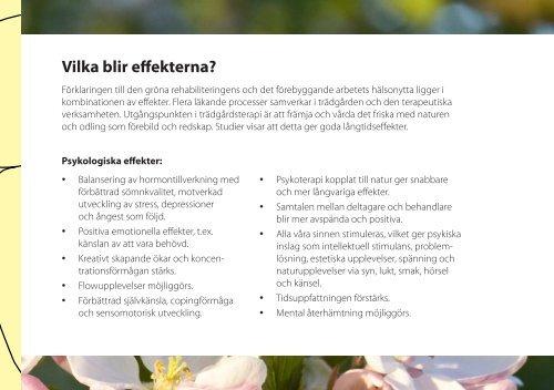 Hälsoträdgård i Malmö