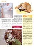 Disfruta de la calidad sana - Page 6