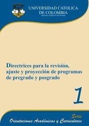 Directrices para la Revisión, Ajuste y Proyección de Programas de ...