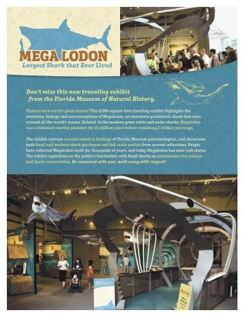 Don't miss this new traveling exhibit from the Florida Museum of ...