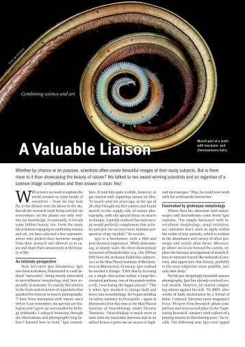 Cover Story: Combining science and art - LabTimes
