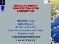 Managing Equine Reproduction With Acupuncture - SIAV