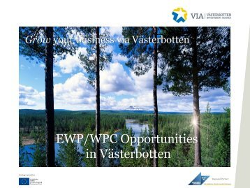 EWP and WPC manufacturing opportunity in Västerbotten