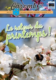 n° 11 mars 2011 - Ville de Caromb
