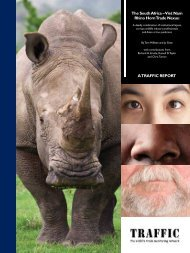 The South Africa – Viet Nam Rhino Horn Trade Nexus (PDF, 3 MB)