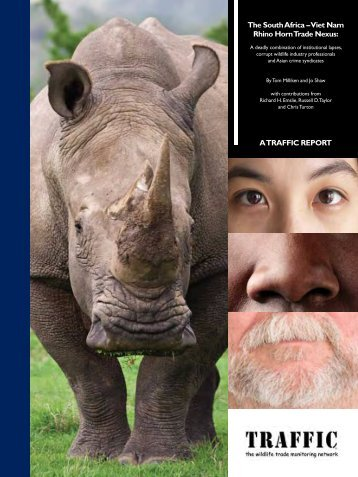 The South Africa – Viet Nam Rhino Horn Trade Nexus (PDF, 3 MB)