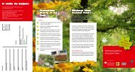 Flyer zur Baumpatenschaft - Sparkasse Nürnberg
