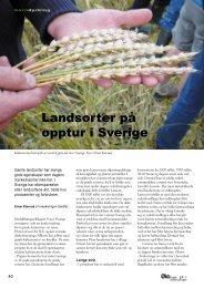 Landsorter på opptur i Sverige - Fagbladet Økologisk Landbruk