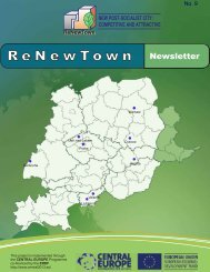 Newsletter No 9 - ReNewTown