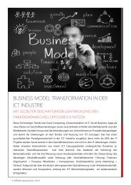 Business Model Transformation - SIRIUS advisors