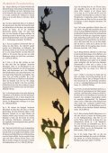 Namibias Süden - Outdoor Adventure - Seite 2
