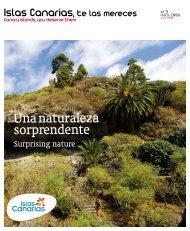 Una naturaleza sorprendente - Canary Islands