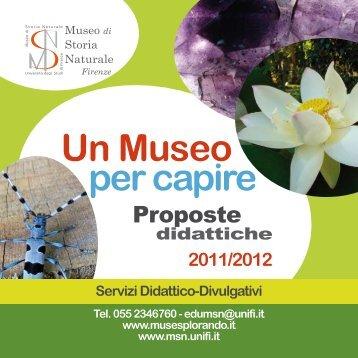 Un Museo per capire - Museo di Storia Naturale - Università degli ...