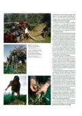 O olival português fala espanhol - CNA - Page 2