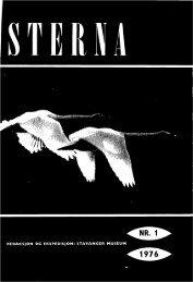 Sterna, bind 15 nr 1 (PDF-fil) - Museum Stavanger